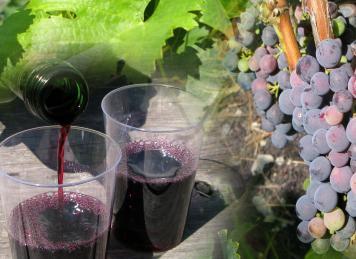 Trauben und Rotwein (Foto: © Joujou, pixelio.de)